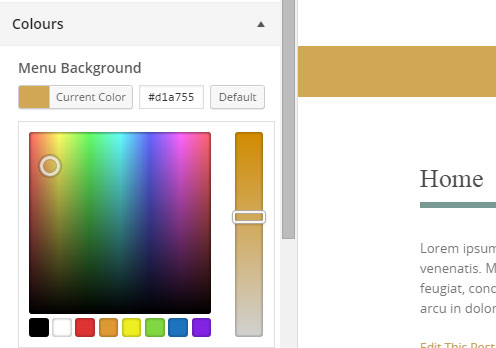 Pure & simple Pro Theme Documentation