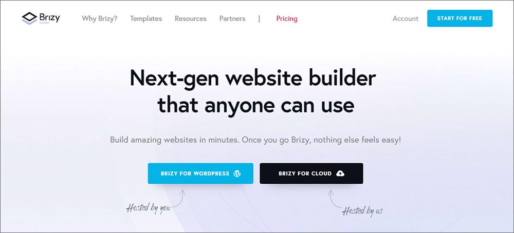 10_Brizy-wordpress-builder