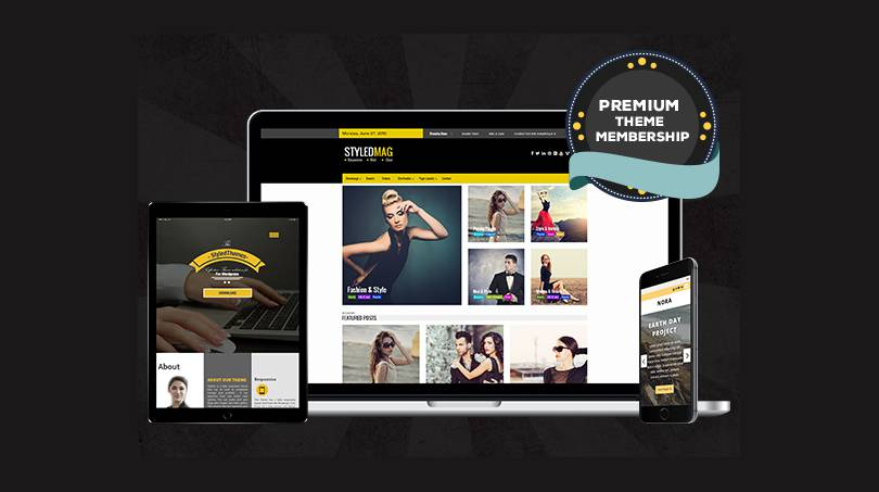 Premium Membership with Annual Renewal Option for professional Wordpress support