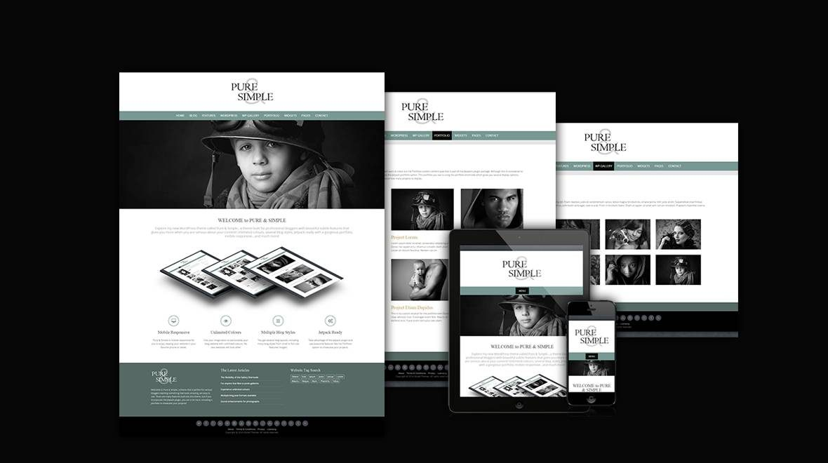 Pure & Simple Pro - Premium Wordpress theme