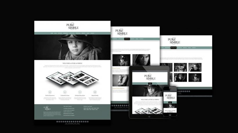 Pure & Simple Pro - Premium WordPress theme