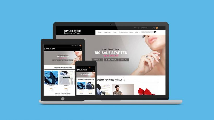 Styled Store Pro Premium WP Theme